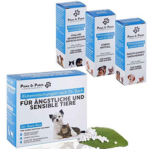 Paws & Patch Bachblüten 3er Basis-Box für ÄNGSTLICHE & Sensible Katzen & Hunde, bei Angst, Unsicherheit, Stress, im Notfall, für Vitalität und Detox, 3 x 10g
