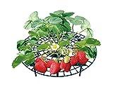 UPP Erdbeerreifer & Fruchtreifer | Einstellbare Stützen für Erdbeeren Salat und Tomaten | Schneckenschutz und Schutz vor Fäulnis und Schimmel [20er Set]