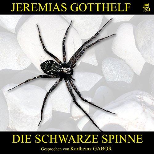Die schwarze Spinne Titelbild