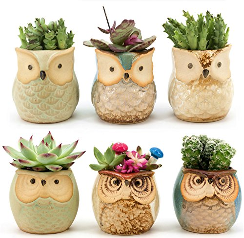 Weierken Mini 6PCS Owl Pot Ceramic Flowing Glaze Base Serial Set Succulent Plant Pot Cactus Plant Pot Valentine's Day Container Planter Bonsai Pots with A Hole, Christmas, New Year Party Supplies