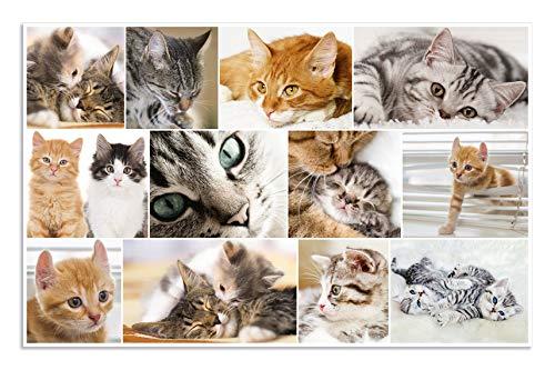 Herma 19379 Schreibtischunterlage Motiv Katzen, für Kinder, abwischbar, rutschfest, 55 x 35 cm, beidseitiges Motiv zum wenden, 1 Schreibunterlage aus beschichtetem Karton