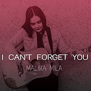 I Can't Forget You
