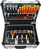 Famex Werkzeuge 700-L Maletín de herramientas vacío, Color aluminio