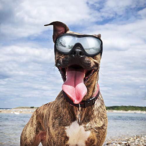 VANVENE Dog Sun Rays Protection Goggles Dog Sunglasses for Medium to Large Dogs