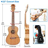 Immagine 1 vangoa ukulele da concerto 23