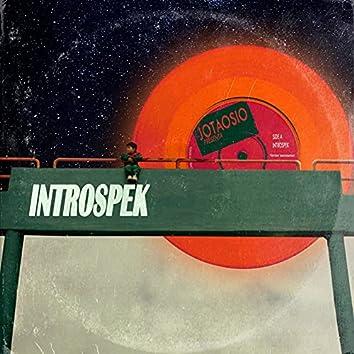 Introspek
