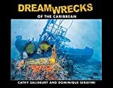 Dreamwrecks of the Caribbean: Discover the best shipwrecks of the region (English Edition)