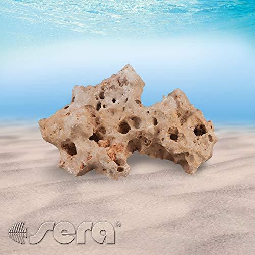 sera 32346 Rock Hole Stone L (Stück von 2 bis 3 kg) Lochgestein bzw. Lochsteine - Dekoration Felsen Malawi Tanganjika See - Naturstein Deko fürs Aquarium