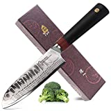 TUO Santoku Knife-Meat and Vegetable Knife-Japanese AUS-10D Damascus High Carbon Steel-Ergonomic G10 Handle-Ring-D