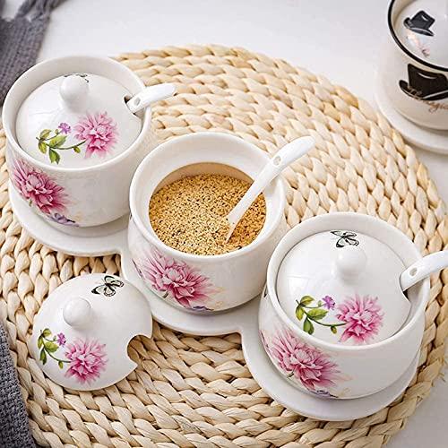 Vaso per condimenti in Ceramica Contenitore per contenitori Porcellana Dipinta a Mano con Cucchiaio e Coperchio Contenitori per Cucina Salvaspazio Lattina per conservare Sale Pepe (Set da Tre