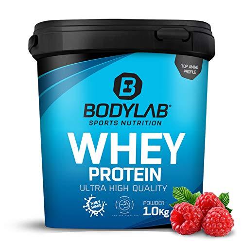 Protein-Pulver Bodylab24 Whey Protein Himbeer-Joghurt 1kg / Protein-Shake für Kraftsport & Fitness / Whey-Pulver kann den Muskelaufbau unterstützen / Eiweiss-Pulver mit 80% Eiweiß / Aspartamfrei