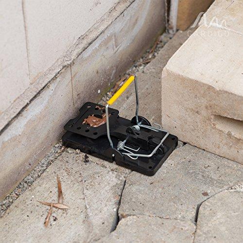 Gardigo Lot de 5 Pièges à rats, Tapettes à souris | Écologique et Réutilisable (5 pièces)