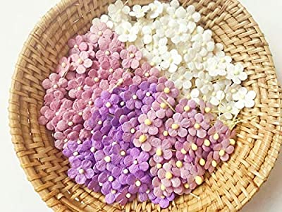 TH Mixed Purple White Flowers Embellishment with Thread stem 10 mm Mulberry Paper Flowers Tiny Size Craft Supplies Scrap Booking Embellishments for so Many Card Craft Projects
