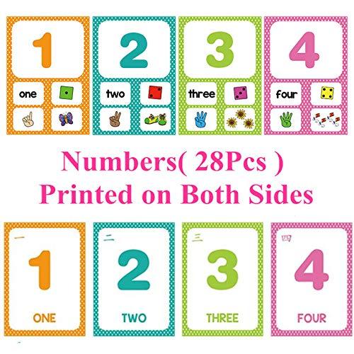 XiYon Gedruckt auf beiden Seiten Englisch & Zahlen 1-100 Karteikarten Lernspielzeug für Kinder Kinder Spiele Lehrmittel Baby, Zahlen