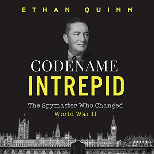 Codename Intrepid audiobook cover art