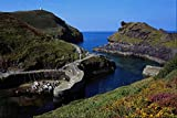 579094 Boscastle Harbor Cornwall England A4 Photo Poster