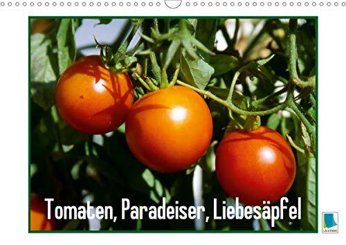 Tomaten, Paradeiser, Liebesäpfel (Wandkalender 2021 DIN A3 quer)
