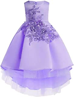 Best Gift Kids Party Dresses For Girls Embroidery Princess Dress Flower Girls Wedding Dress2-10 Years