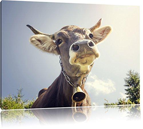 Pixxprint Lustiges Portrait Einer Kuh, Format: 100x70 auf Leinwand