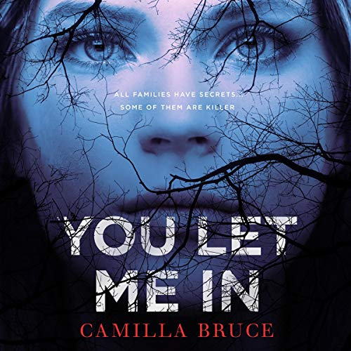 You Let Me In audiobook cover art