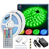 MINGER Led Strip Lights Kit, 32.8Ft RGB Light Strip with Remote, Controller Box and Support Clips Ideal for...