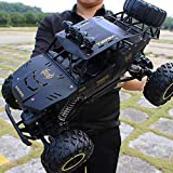 DBXMFZW 2.4G High-Speed Off-Road Remote Control Car, Large 4WD Climbing RC Vehicle, Alloy Bigfoot Monster RC Truck, Independent Shock Absorption, Strong and Resistant to Fall, Gifts for Adults