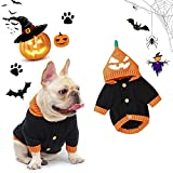 Banooo Halloween Dog Sweater Cute Pumpkin Puppy Party Costumes Dog Hooded Knitwear Warm Pet Sweater for Fall Winter (S, Black)