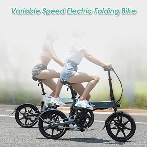 HAINIWER FIIDO D2S Elektrofahrrad zusammenklappbar, 16 Zoll City Elektrofahrrad 250W 6-Gang-Shift-E-Bikes für Erwachsene Radfahren im Freien, Pendeln