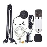 ammoon Micrófono Profesional Estudio de Difusión Grabación de Condensador Kit de Micrófono con el Montaje de Choque Suspensión Ajustable Brazo de Tijera Abrazadera de Montaje de Stands Filtro Pop