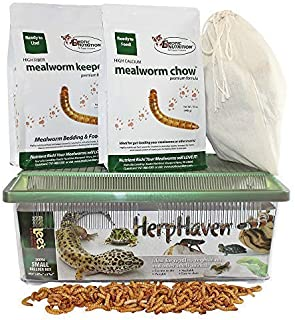 Mealworm Breeder Kit - Breed Live Feeder Worms for Hedgehogs, Sugar Gliders, Reptiles, Wild Birds, Chickens, Lizards, Bearded Dragon, Skunks, Opossum, Fish, Turtles, Tortoises, Geckos, Frogs, Ducks