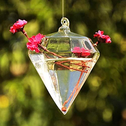 Cafopgrill Hangplant pot voor planten in pot Terrarium Teardrop Rope in diamantvorm Terrarium voor vetplanten