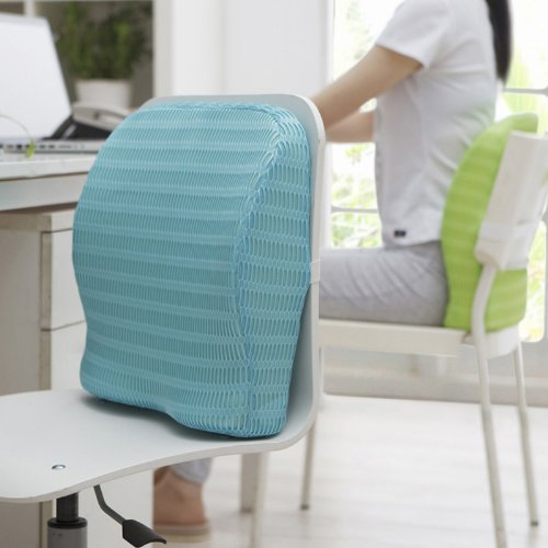 HealthSense Soft-Spot BC 21 Orthopedic Backrest Cushion with Memory Foam for Study, Home, Office chair & Sofa with Lumbar Support for Back Pain Relief (Ice Blue)