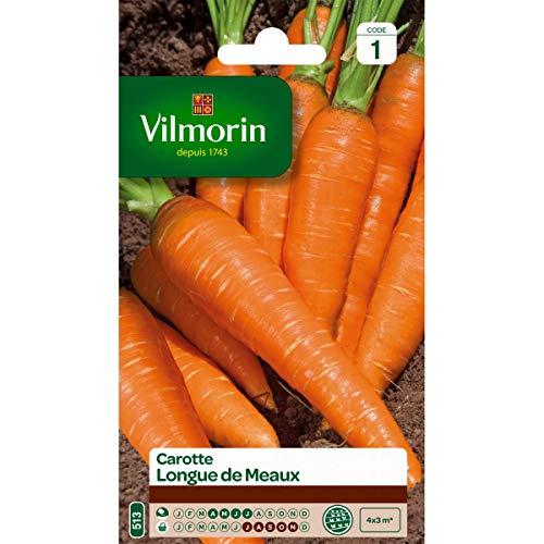 Vilmorin - Sachet graines Carotte longue de Meaux