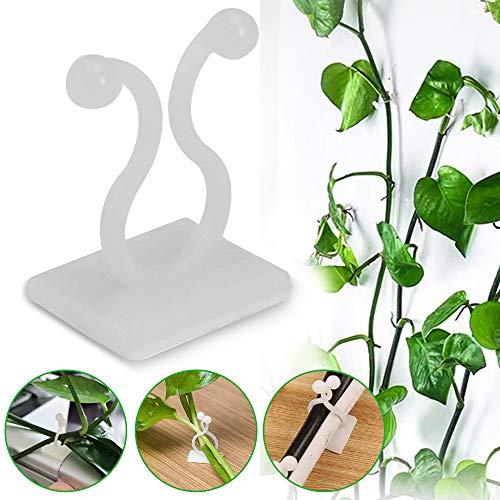 Clips de fijación de pared para plantas trepadoras, 100 piezas de fijación de vides invisibles autoadhesivos, para plantas, enredaderas de pared o viñas, fijación de viñas (M, blanco)