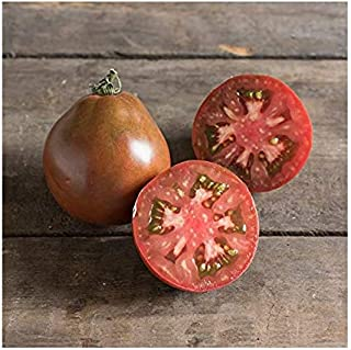 japanese trifele tomato plant