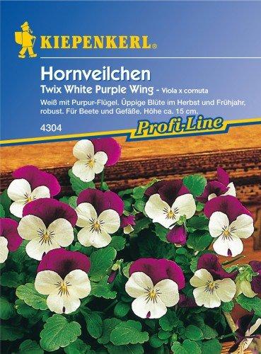 Hornveilchen Twix White Purple Wing