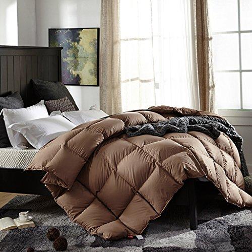 MMM Hiver Quilt Thicker Keep Warm Individuel Double Quilt Core Literie ( Couleur : Marron , taille : 200*230cm(3kg) )
