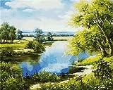 Pintura al óleo por números paisaje natural pintura acrílica decoración del hogar bricolaje sin marco colorear por números bosque pintado a mano regalo A5 40x50cm