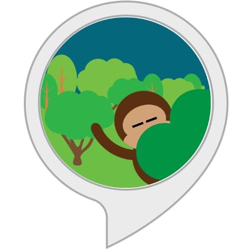 Dschungelgeräusche für Schlaf, Entspannung, Fokus