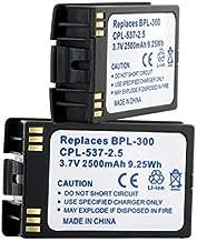 Avaya 3641 Cordless Phone Battery (Li-Ion 3.7V 2500 mAh ) - Replacement For Spectralink BPL300 Cordless Phone Battery