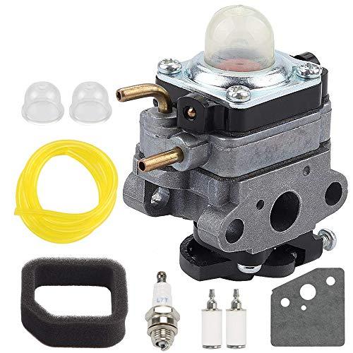 LIYYOO 753-06258A Carburetor for MTD 75306258A Ryobi RY252CS RY253SS RY251PH RY254BC 2 Cycle 25ccTrimmer Craftsman Cultivator 316299372 316773800