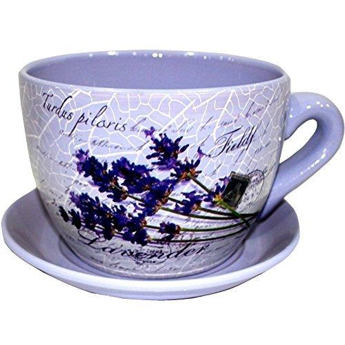 Gr8 Garden Decorative Novelty Terracotta Tea Cup and Saucer Shaped Garden Patio Flower Planter Plant Pot Tub (Large Floral Purple Flower)