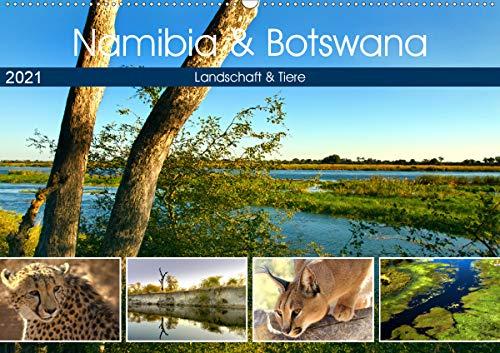 Namibia & Botswana (Wandkalender 2021 DIN A2 quer)
