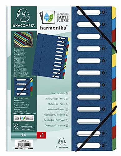 Exacompta 55122E 12 Dividers Expanding Document Folder - Blue