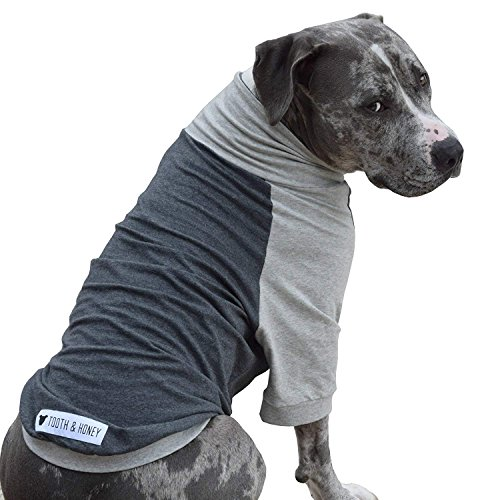 Tooth & Honey Large Dog Shirt