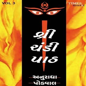 Shree Chandipath, Vol. 3