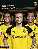 Borussia Dortmund Posterkalender - Kalender 2019 - Heye