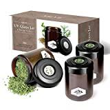 UV Glass Jar, 3 Pack 250ml Ultraviolet Glass Jars Herb Container Cannister Smell Proof Container with Embedded Temperature Hygrometer in Lid to Storage Herbs, Spices, Tea, Black.