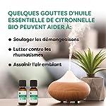 citronnelle #2