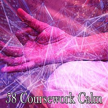 58 Coursework Calm